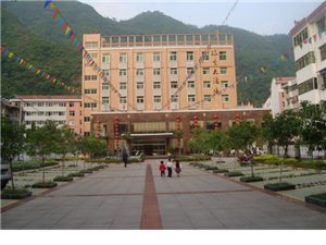绿叶大酒店