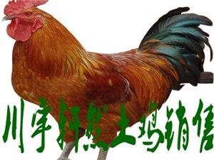 川宇轩然土鸡销售