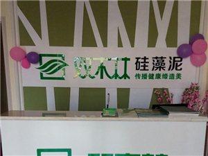 青州�p木林硅藻泥