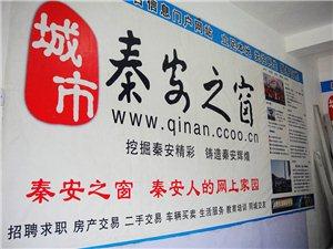 秦安之窗网站办公室