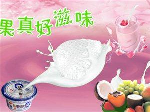 【3箱包送】�H售45元享�r值85元《碗�b酸奶1980g/箱》,采用���|牛奶制成,�肋x奶源,含�}量高,�I�B�S富,酸甜�m口,�o添加!