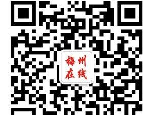【民生政策】梅州招聘信息
