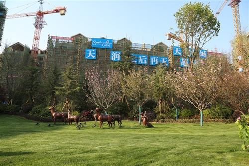 天润城实景图