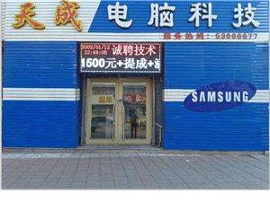 延寿县天成电脑科技公司