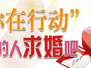 臨澧新印象婚慶禮儀公司