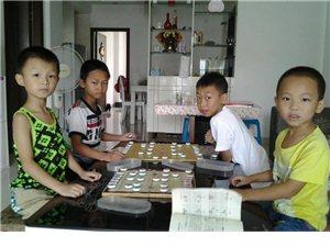 遠大教育棋類培訓中心