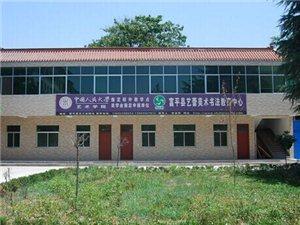富平艺蕾美术书法教育中心