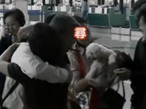 生命最后十分钟 1985年日本航空123
