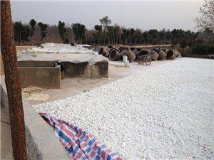 郎溪飛鯉白米淀粉廠
