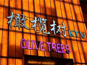 橄榄树KTV