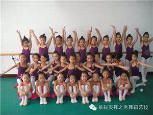 灵舞之秀舞蹈艺校