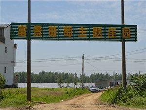 潢川富景葡萄园